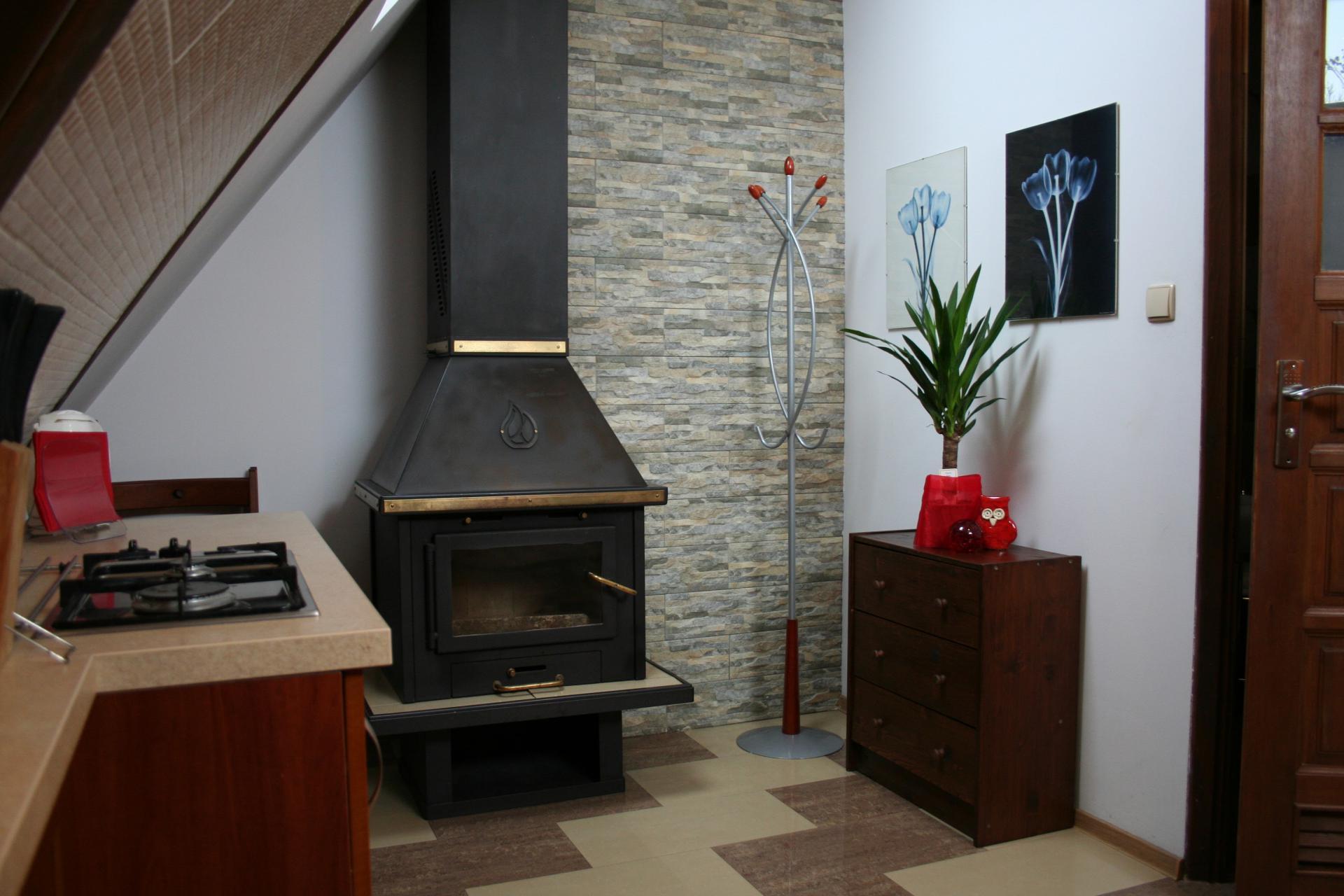 Apartamenty CENTRUM Zakopane #B4 (6)